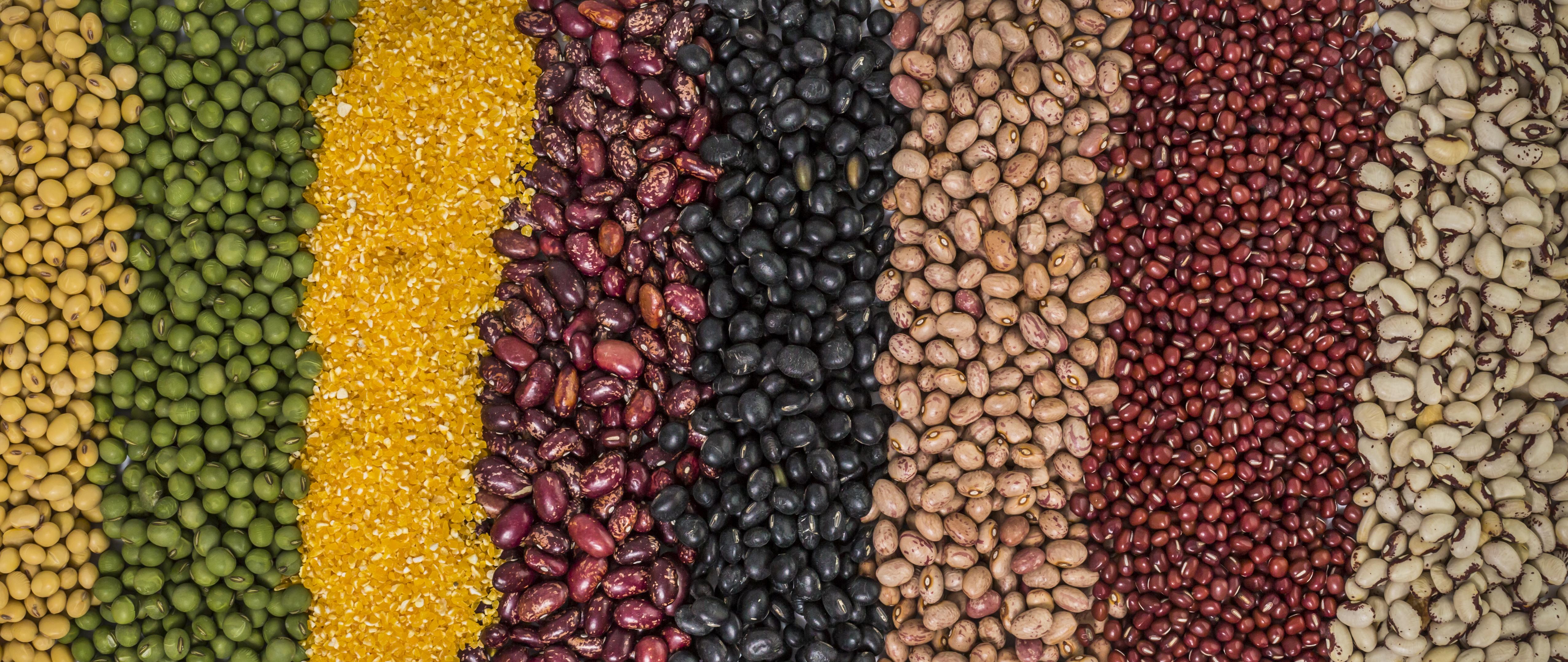 豆制品对于白癜风患者有什么帮助呢?